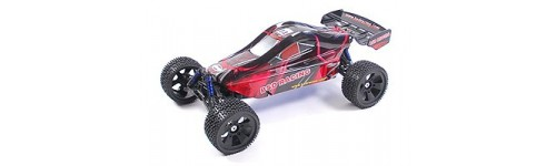 Bsd racing 1/5 brushless