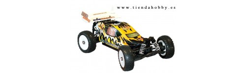 Bsd 1/8 buggy auto starting
