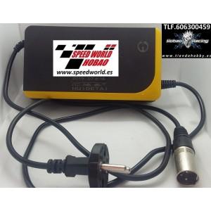 Cargador 48V plomo Scooter electrico