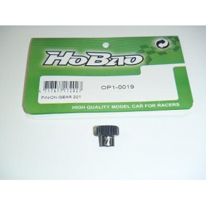 Piñon 22T. Hyper H2 -  3.19MM P48